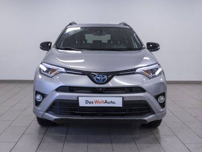 Toyota Rav4 Hybride 197ch AWD Collection occasion