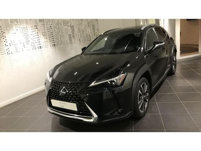 Lexus Ux 250h 4WD Executive MY20 occasion