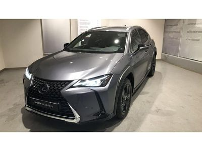 Lexus Ux 250h 2WD Luxe MY20 occasion